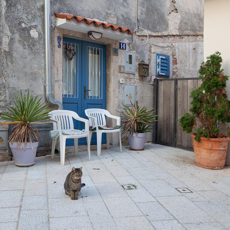 Mali mieszkańcy Istrii