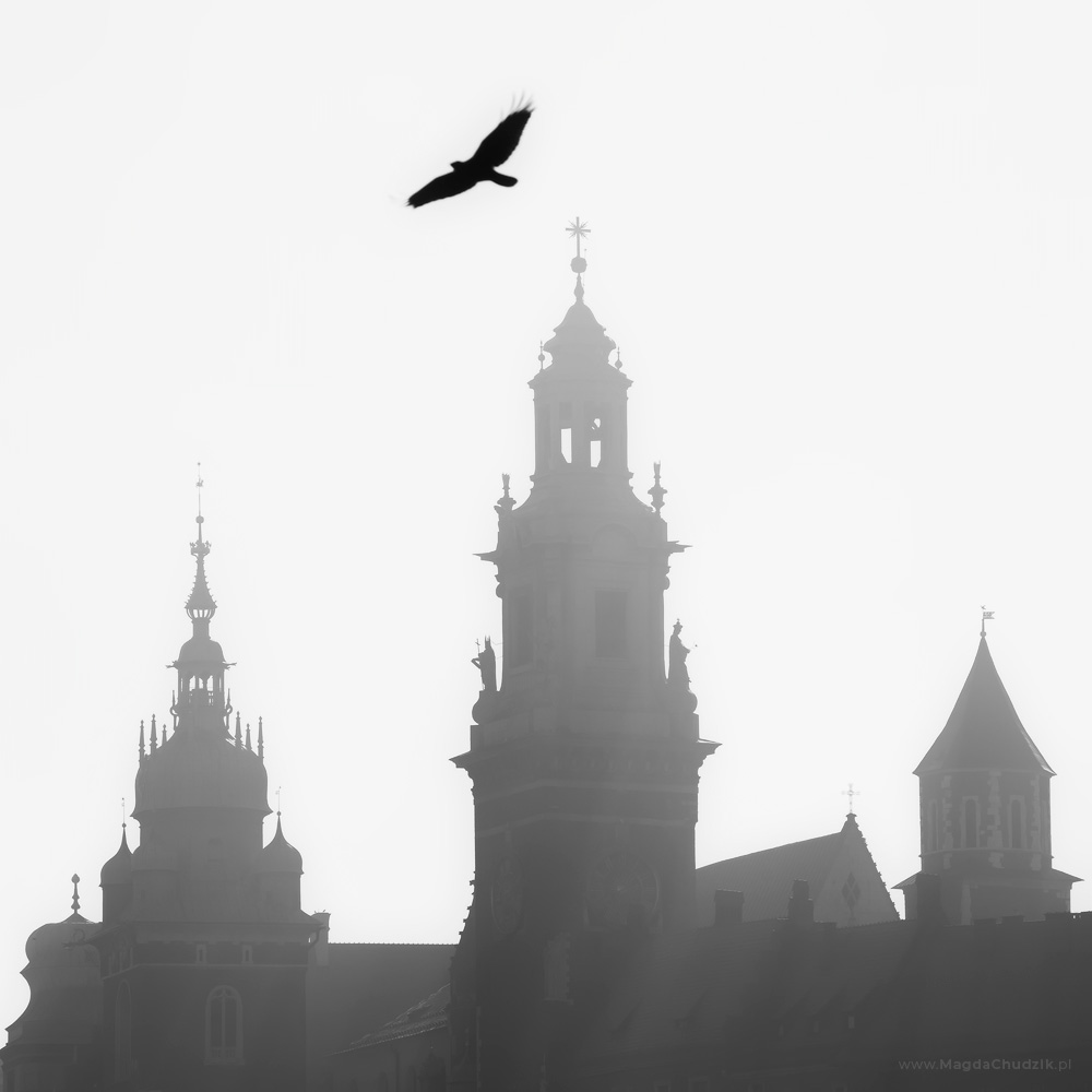magda-chudzik-street-photography-poland-krakow-039