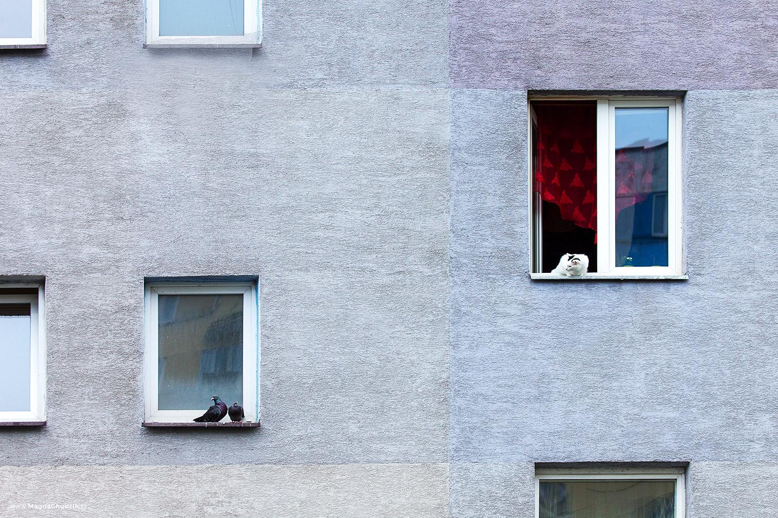 magda-chudzik-street-photography-poland-rzeszow-027
