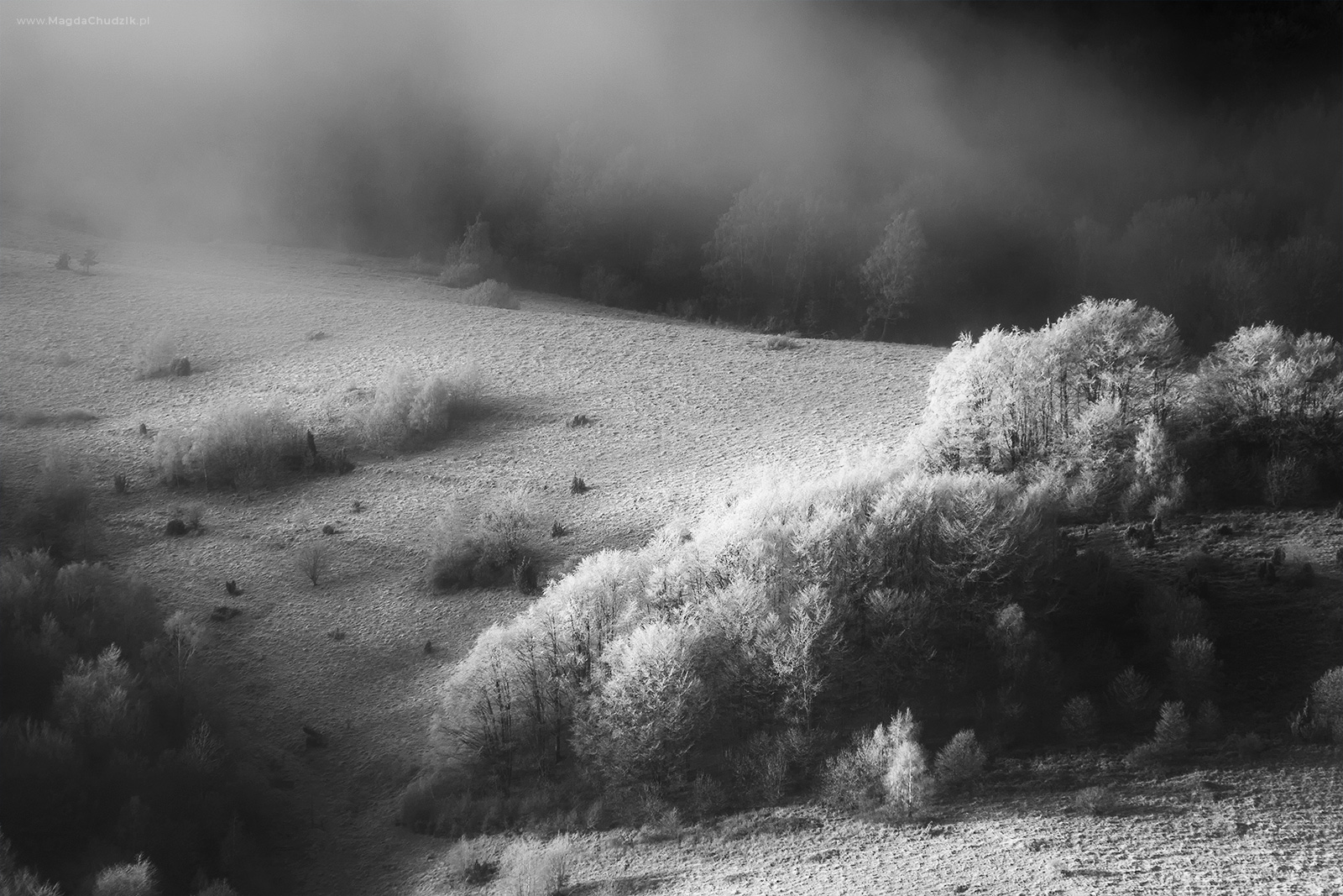 magda-chudzik-black-and-white-landscape-photography-27