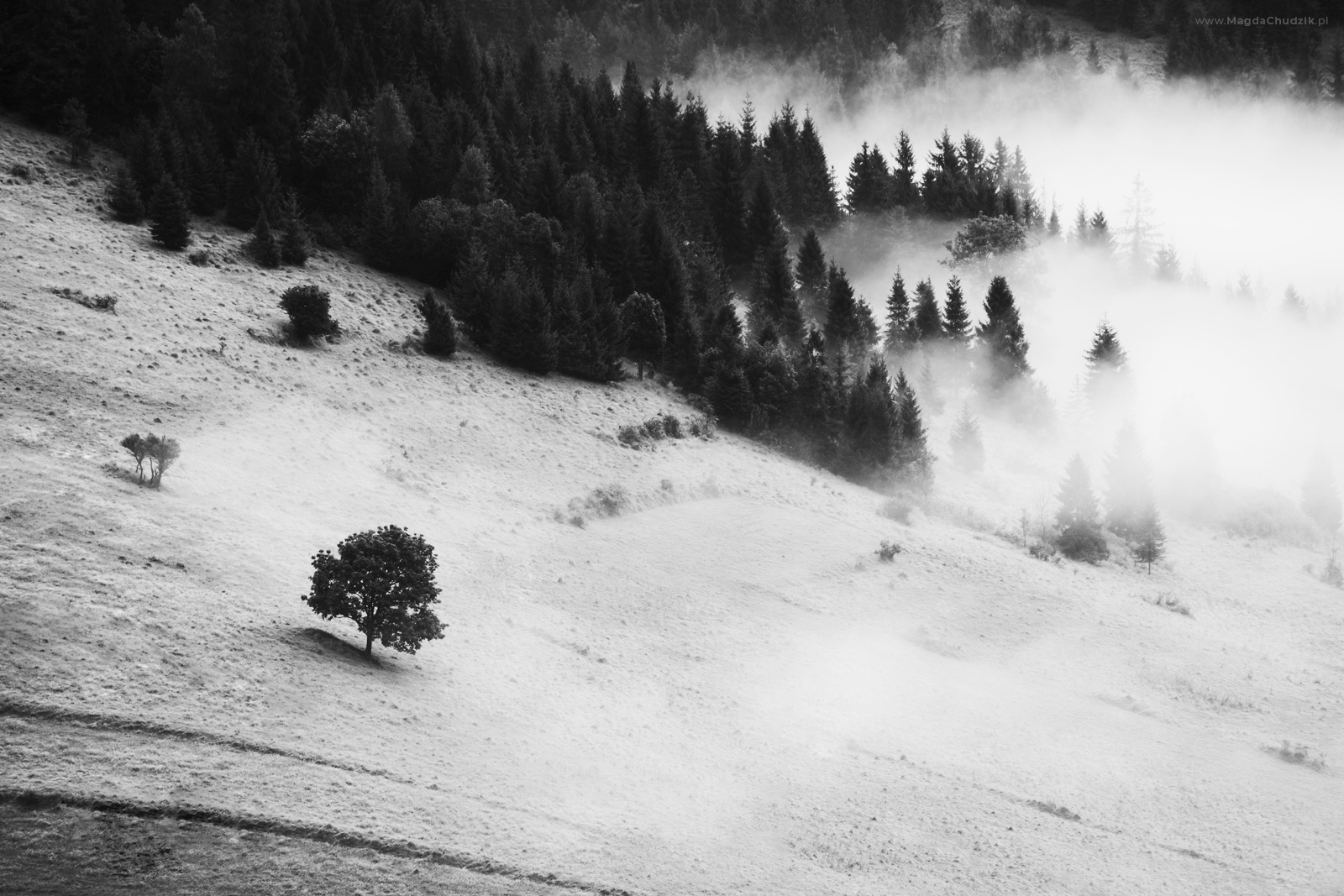magda-chudzik-black-and-white-landscape-photography-30
