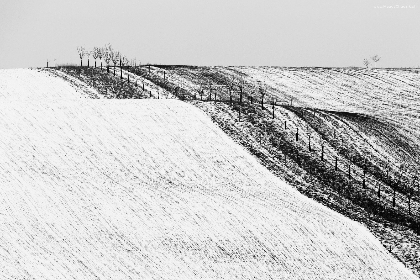 magda-chudzik-black-and-white-landscape-photography-33