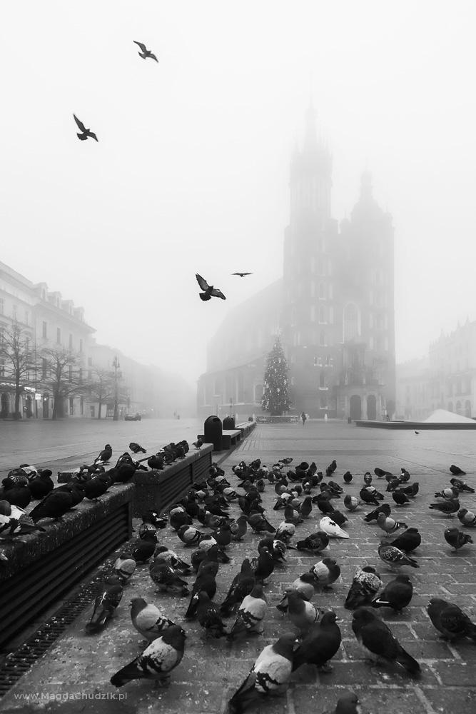 magda-chudzik-street-photography-poland-krakow-085