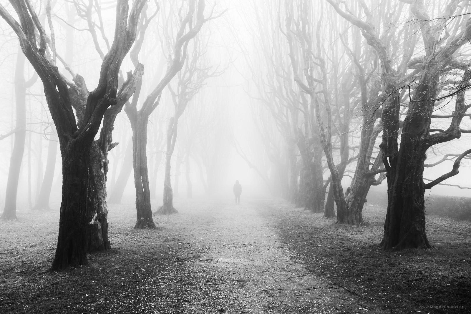 magda-chudzik-black-and-white-landscape-photography-66
