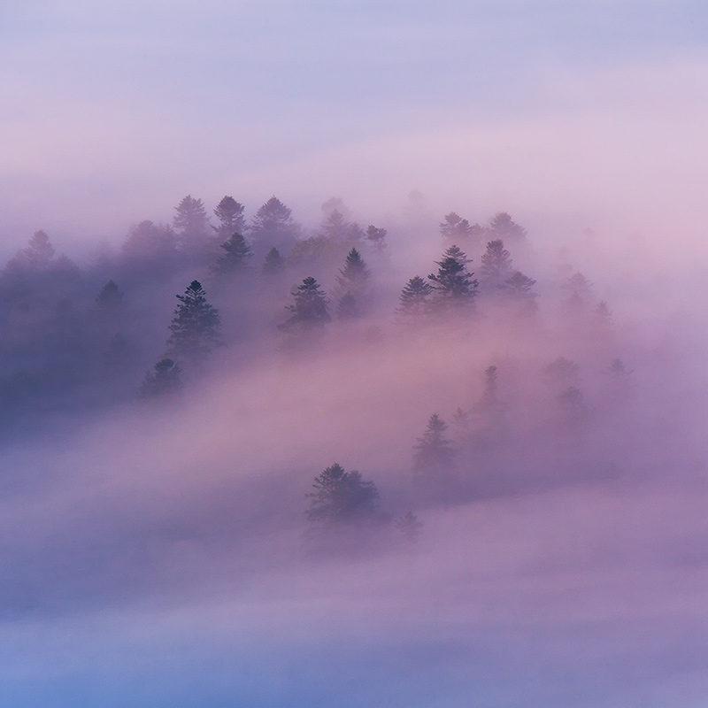Czas na mgły
